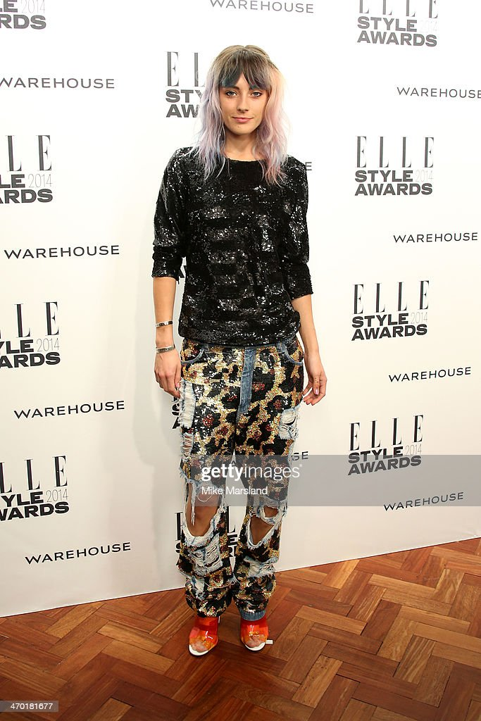 Model Chloe Norgaard attends the Elle Style Awards 2014 at one Embankment on February 18, 2014 in London, England.