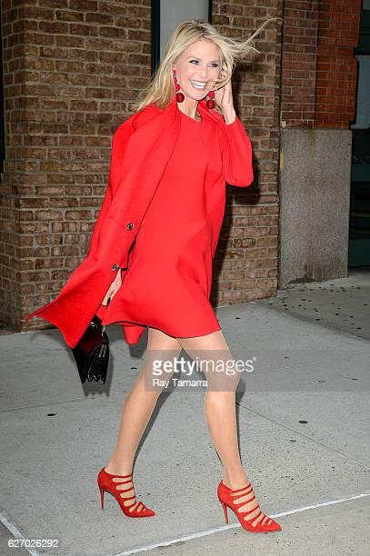 Model Christie Brinkley leaves her Tribeca hotel on December 01 2016 in New York City