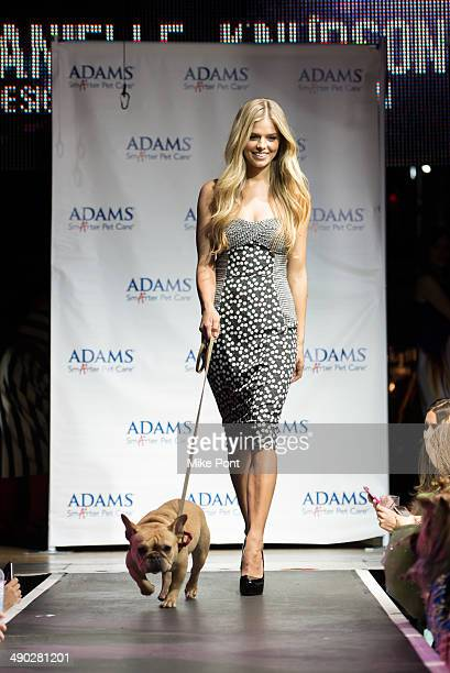 Model Danielle Knudson with dog Almond walks the runway at the 12th Annual Animalfaircom Paws For Style Fashion Show at Pacha on May 13 2014 in New...