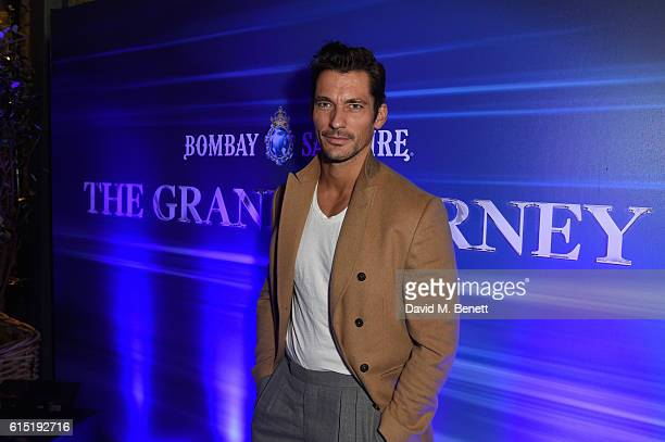 Model David Gandy joins BOMBAY SAPPHIRE to celebrate the launch of The Grand Journey a new immersive drinking and tasting experience inspired by the...