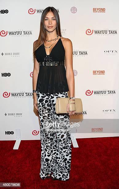 Model Dayana Mendoza attends the 2014 Wayuu Taya Gala Honoring Kimora Lee Simmons at Trump SoHo on June 4 2014 in New York City