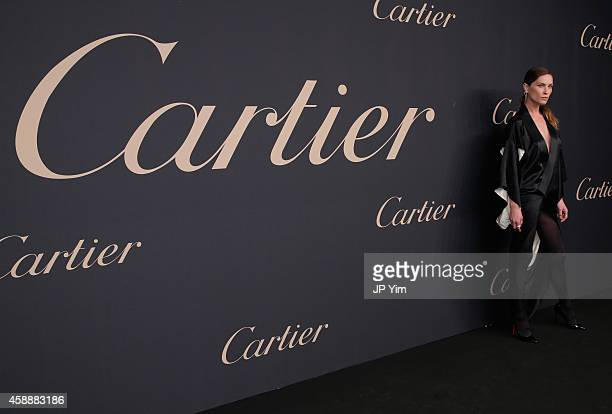 Model Erin Wasson attends The Maison Cartier Celebrates 100th Anniversary Of Their Emblem La Panthere De Cartier at Skylight Clarkson Sq on November...