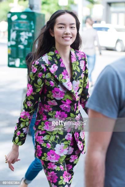 Model Fei Fei Sun is seen in the West Village on June 2 2017 in New York City