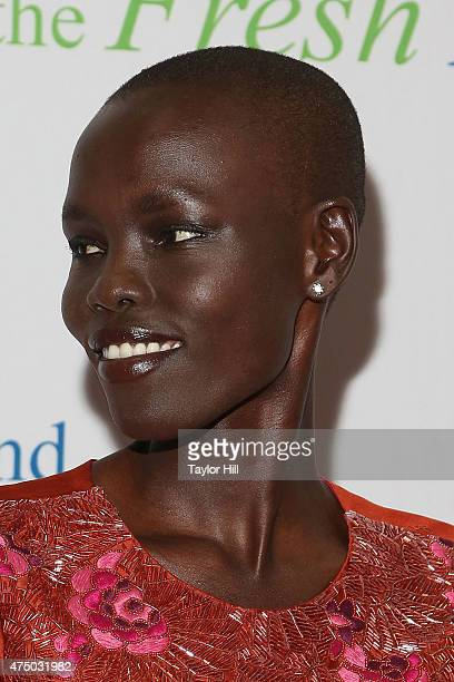 Model Grace Bol attends the 2015 Fresh Air Fund's Salute to American Heroes at Pier Sixty at Chelsea Piers on May 28 2015 in New York City
