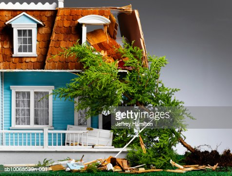Model house damaged by fallen tree, close-up