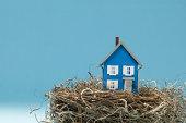 Model house in bird nest