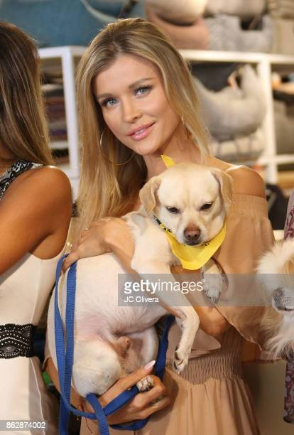 Model Joanna Krupa attends a press conference celebrating Calfornia Governor Jerry Brown signing California assembly Bill 485 The Pet Rescue and...