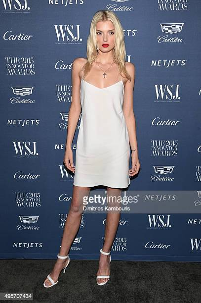 Model Lily Donaldson attends the WSJ Magazine 2015 Innovator Awards at the Museum of Modern Art on November 4 2015 in New York City