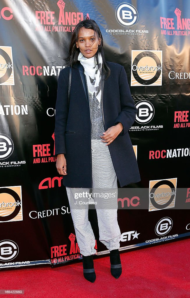 Model Liya Kebede attend the 'Free Angela and All Political Prisoners' New York Premiere at The Schomburg Center for Research in Black Culture on April 3, 2013 in New York City.