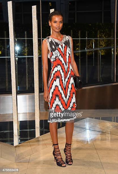 Model Liya Kebede attends the 2015 CFDA Fashion Awards at Alice Tully Hall at Lincoln Center on June 1 2015 in New York City