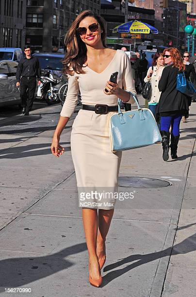 Model Miranda Kerr as seen is November 12 2012 in New York City