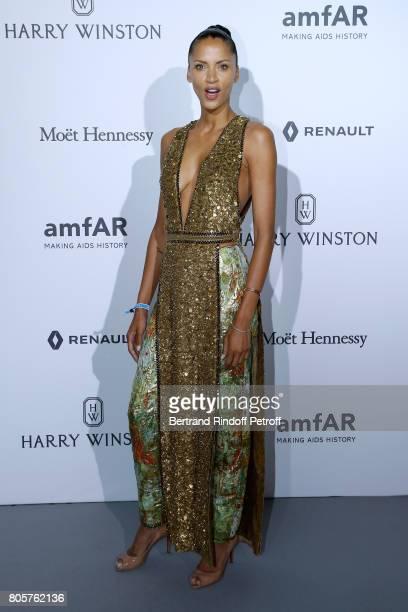 Model Noemie Lenoir attends the amfAR Paris Dinner 2017 at Le Petit Palais on July 2 2017 in Paris France