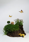 Model of house on soil with digger and butterflies
