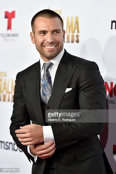 Model Rafael Amaya attends the 2014 NCLR ALMA Awards at the Pasadena Civic Auditorium on October 10 2014 in Pasadena California