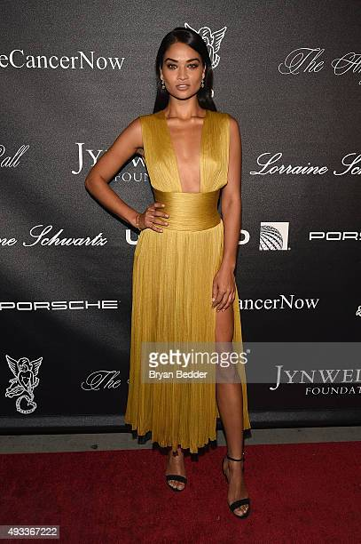 Model Shanina Shaik attends Angel Ball 2015 hosted by Gabrielle's Angel Foundation at Cipriani Wall Street on October 19 2015 in New York City