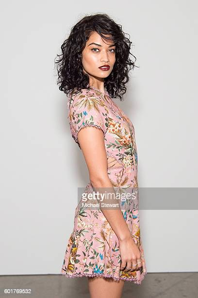 Model Shanina Shaik attends the Zimmermann Spring 2017 show during New York Fashion Week at Metropolitan West on September 9 2016 in New York City