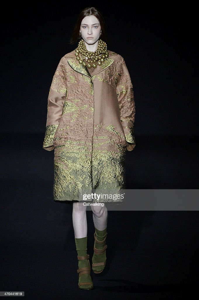 A model walks the runway at the Alberta Ferretti Autumn Winter 2014 fashion show during Milan Fashion Week on February 19 2014 in Milan Italy