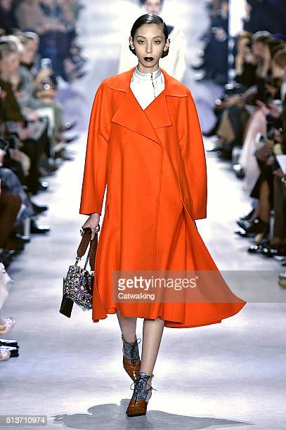 A model walks the runway at the Christian Dior Autumn Winter 2016 fashion show during Paris Fashion Week on March 4 2016 in Paris France
