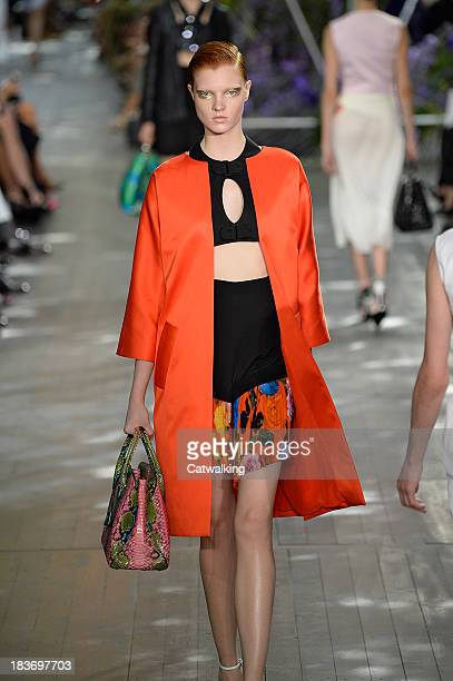 A model walks the runway at the Christian Dior Spring Summer 2014 fashion show during Paris Fashion Week on September 27 2013 in Paris France