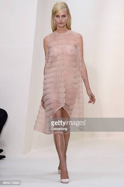 A model walks the runway at the Christian Dior Spring Summer 2014 fashion show during Paris Haute Couture Fashion Week on January 20 2014 in Paris...