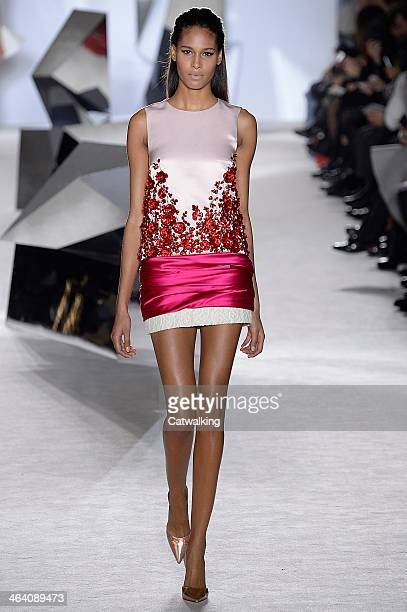A model walks the runway at the Giambattista Valli Spring Summer 2014 fashion show during Paris Haute Couture Fashion Week on January 20 2014 in...