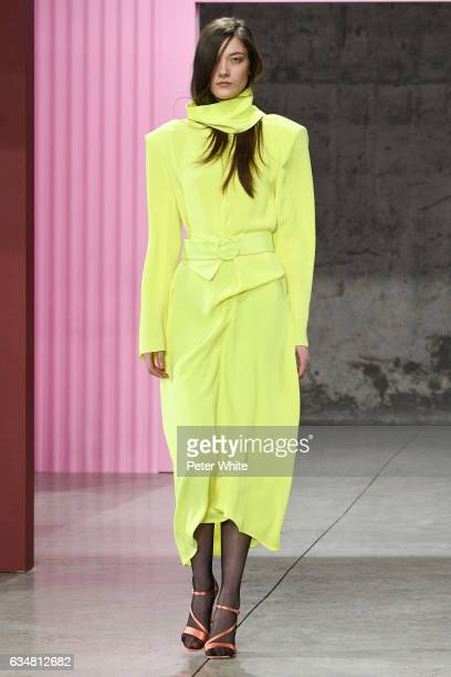 A model walks the runway at the Tibi fashion show during New York Fashion Week at S kylight Modern 537 West 27th Street on February 11 2017 in New...