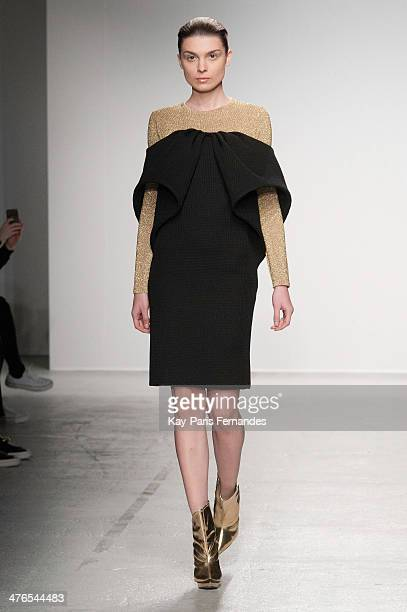 A model walks the runway during the Amaya Arzuaga show as part of the Paris Fashion Week Womenswear Fall/Winter 20142015 on March 3 2014 in Paris...