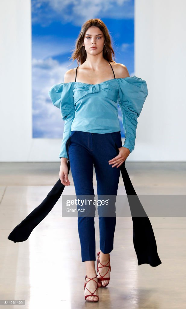 model-walks-the-runway-during-the-hellessy-fashion-show-at-pier-59-on-picture-id844264492