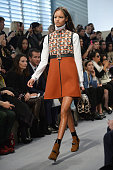 A model walks the runway during the Louis Vuitton show as part of the Paris Fashion Week Womenswear Fall/Winter 20142015 on March 5 2014 in Paris...