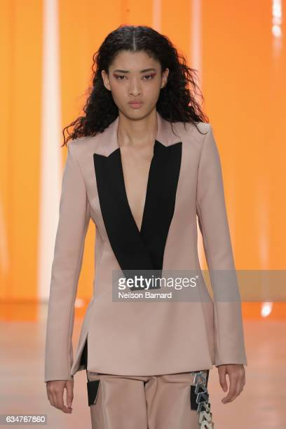 A model walks the runway for the Dion Lee collection during New York Fashion Week The Shows at Gallery 2 Skylight Clarkson Sq on February 11 2017 in...