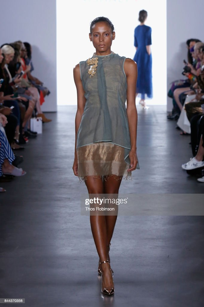 model-walks-the-runway-for-vaishali-s-ss2018-runway-new-york-fashion-picture-id844370358
