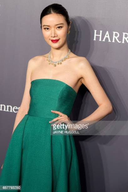Model Winnie Zeng poses on the red carpet during the 2017 American Foundation for AIDS Research Hong Kong gala at Shaw Studios in Hong Kong on March...