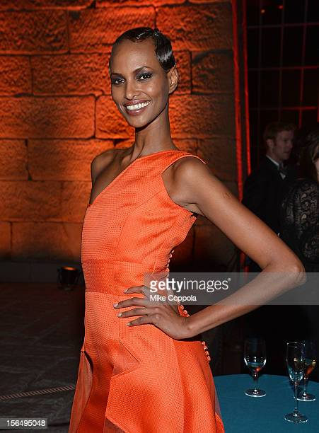 Model Yasmin Warsame attend the 2012 Apollo Circle Benefit at the Metropolitan Museum of Art on November 15 2012 in New York City