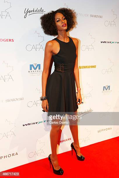 TORONTO ON FEBRUARY 1 Model Yasmin Warsame who is nominated for The Model of the Year Award poses for a photograph on the red carpet at the Canadian...