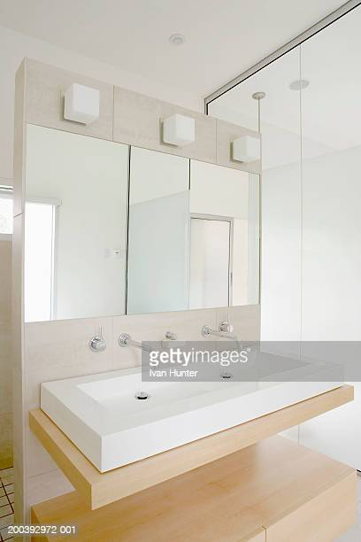 Modern 2-faucet sink in bathroom