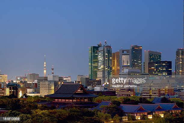Modern and traditional Tokyo at sunset