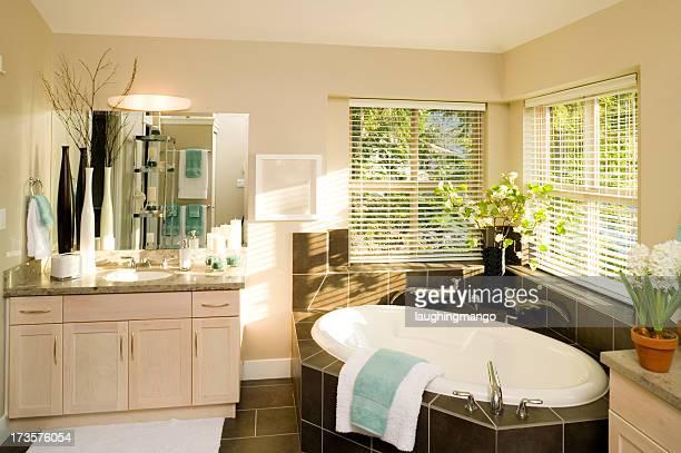 Cabinet de toilette d'une baignoire encastrée house