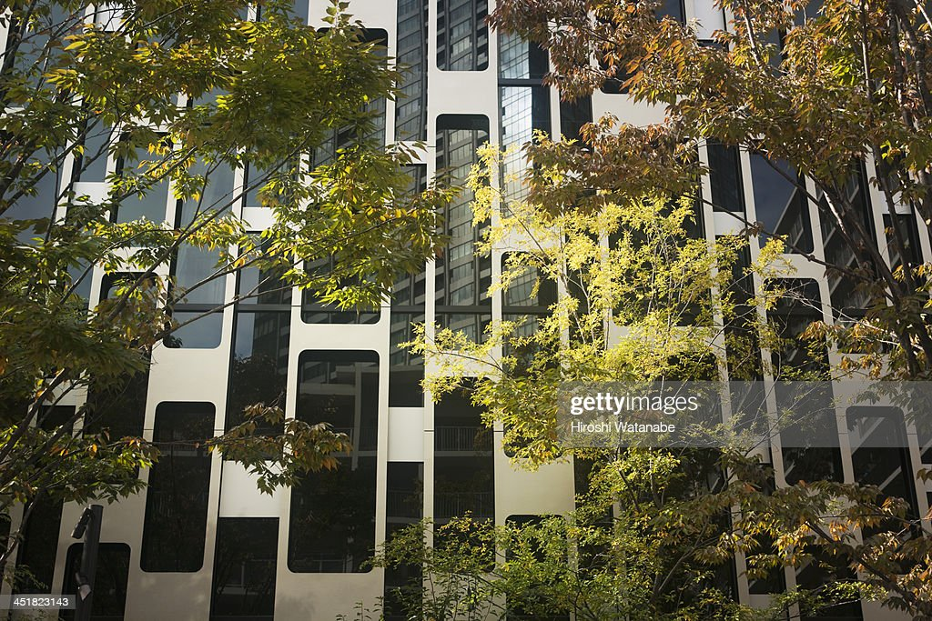 Modern building with trees : Stock Photo