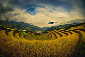 Modern Drone with camera flying on rice fields terraced at sunset in Mu Cang Chai, YenBai, Vietnam.