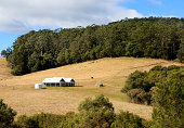 A modern farm house on a hill side with trees surrounding it, a water tank, horse and a tractor are in the paddock.