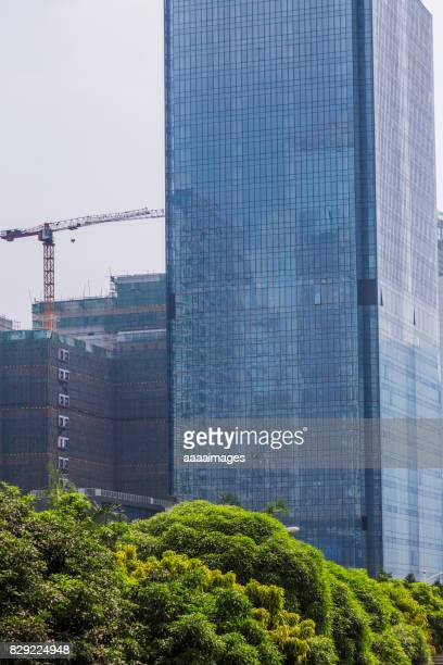 modern glass building with green