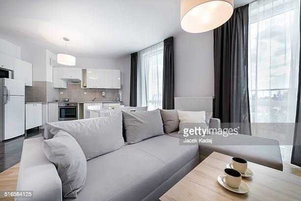 Modern interior design living room in scandinavian