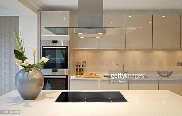 Cozinha moderna Ilha