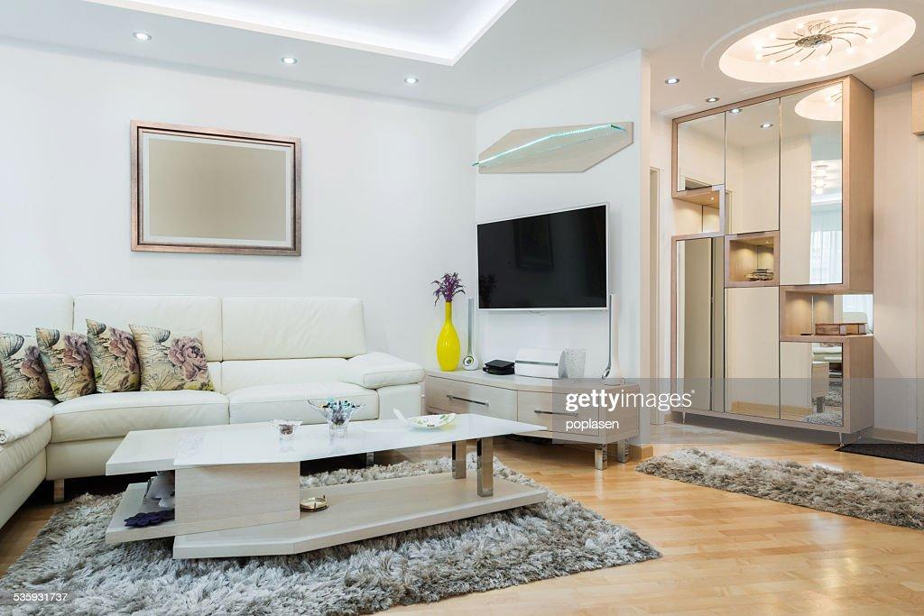 Modern living room interior : Stock Photo