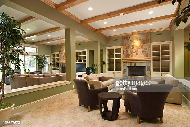 Modern living room with furnishing