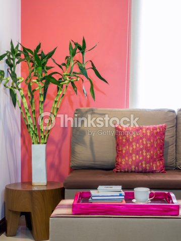Modern Living Room With Sofa And Vase Of Lucky Bamboo Stock Photo ...