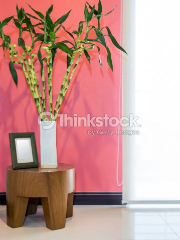 Modern Living Room With Vase Of Lucky Bamboo Stock Photo | Thinkstock