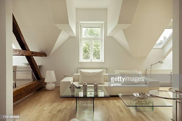Modern loft apartment