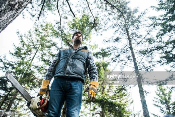 Modern lumberjack