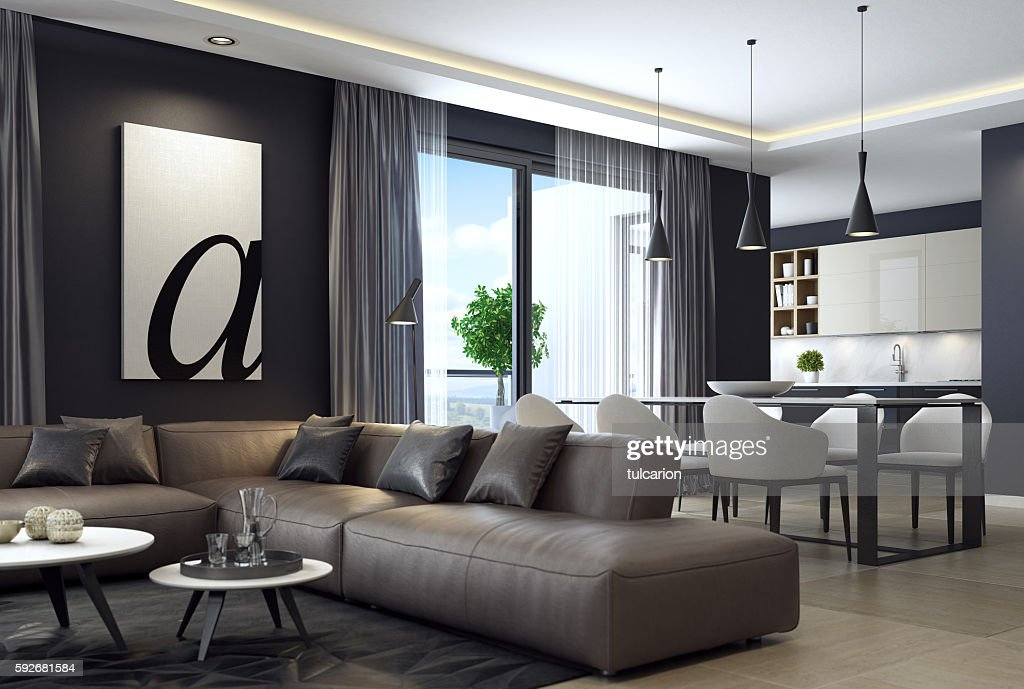 Modern Luxury Black Style Apartment With Leather Sofa